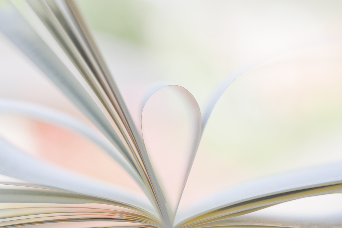 两页折叠的书图片