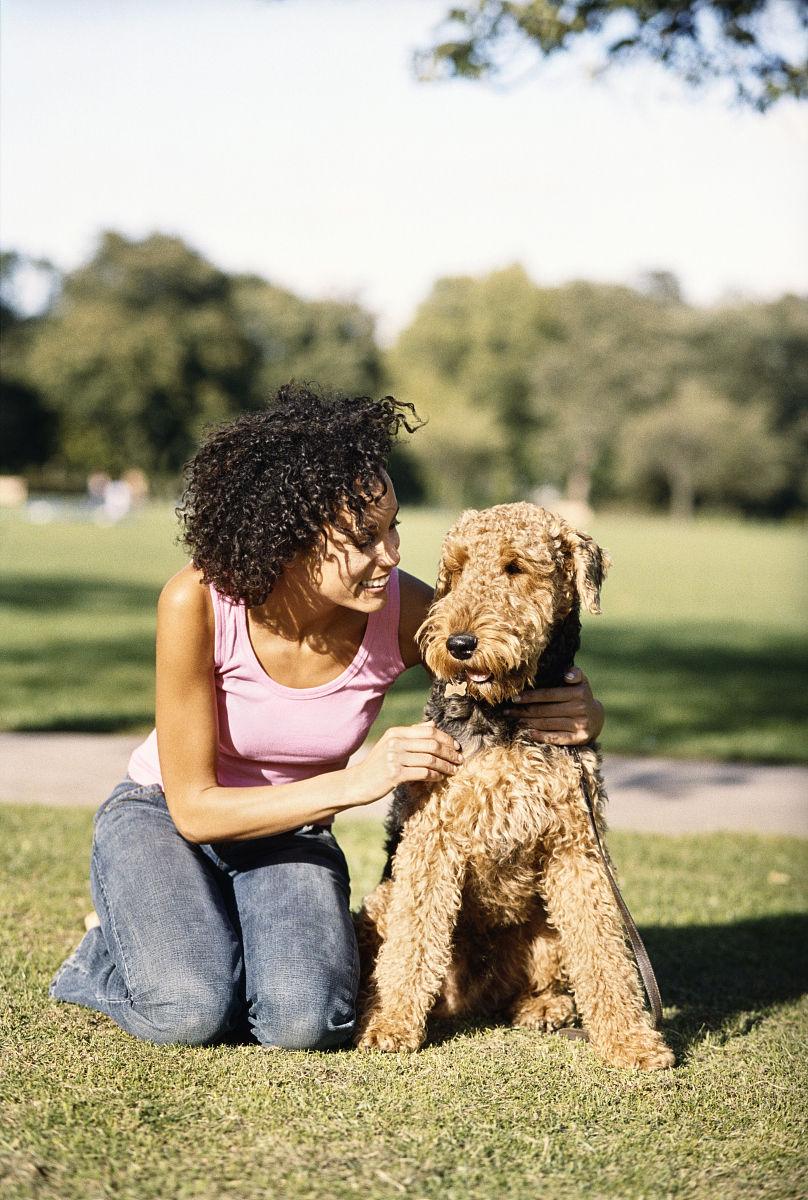 女人跪在她的宠物狗,万能梗,在一个公园图片