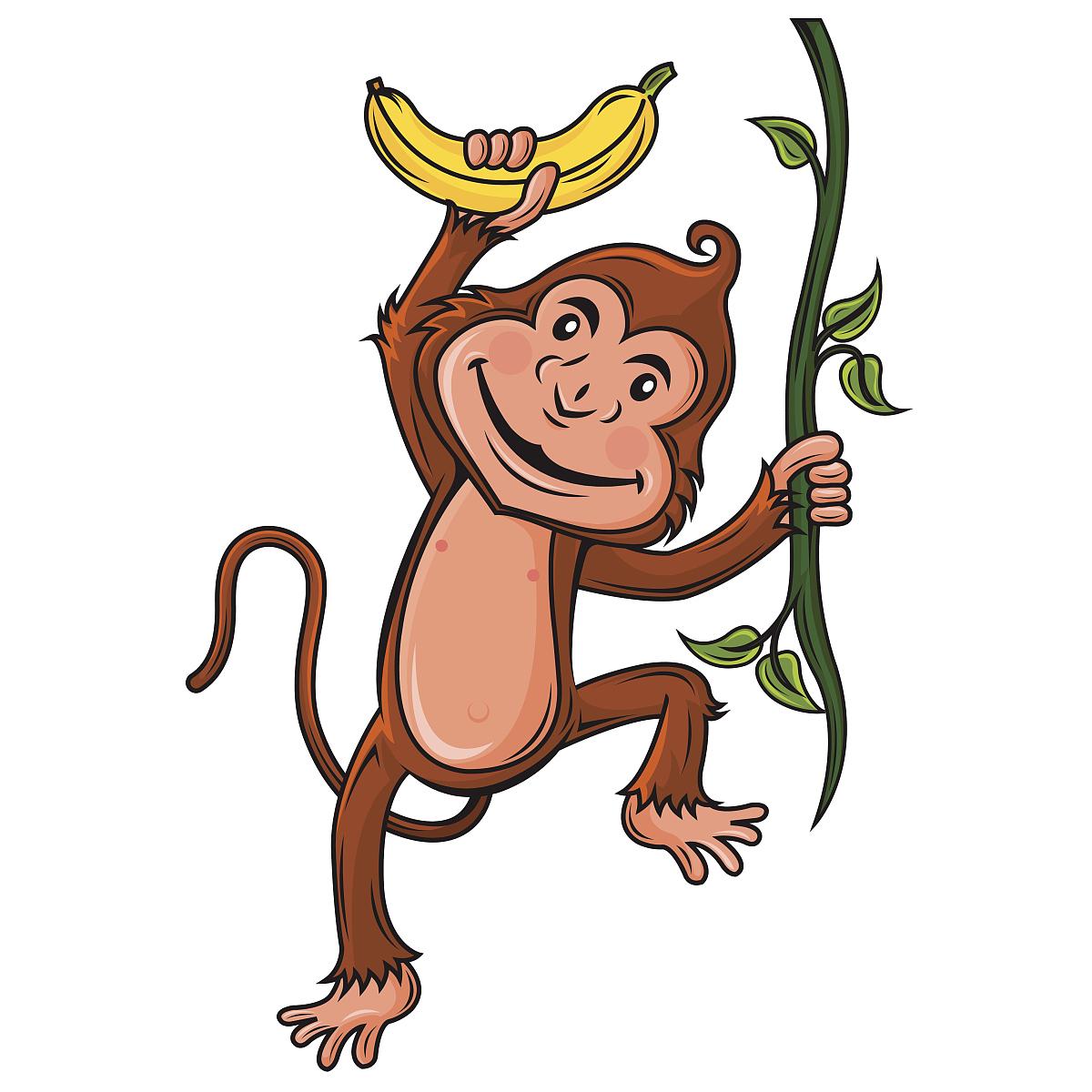 中国猴子种类_猴子,中国文化,春节,计划书,灵感,设计,猿,动物,无人,计算机制图
