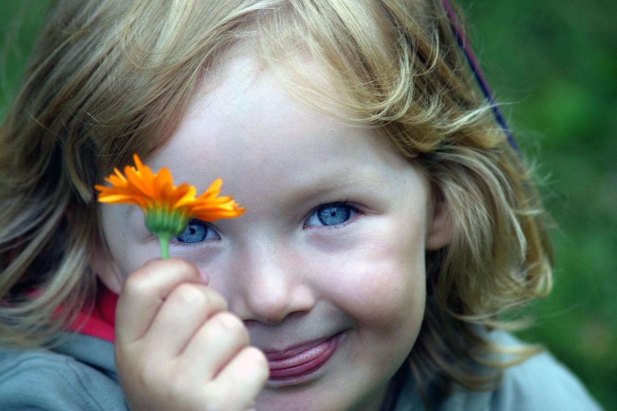 雏菊,童年,儿童,可爱的,彩色图片,女孩,肖像,摄影,仅一朵花,面部表情图片