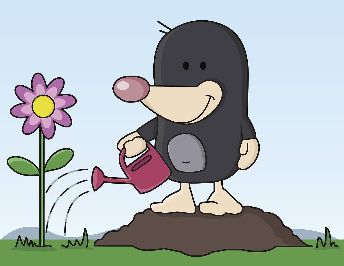 鼹鼠在花园里浇花图片