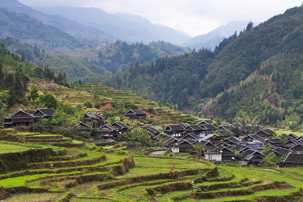 村_苗族村的房子有黑色的屋顶,在山上,梯田融水县,广西省,中国