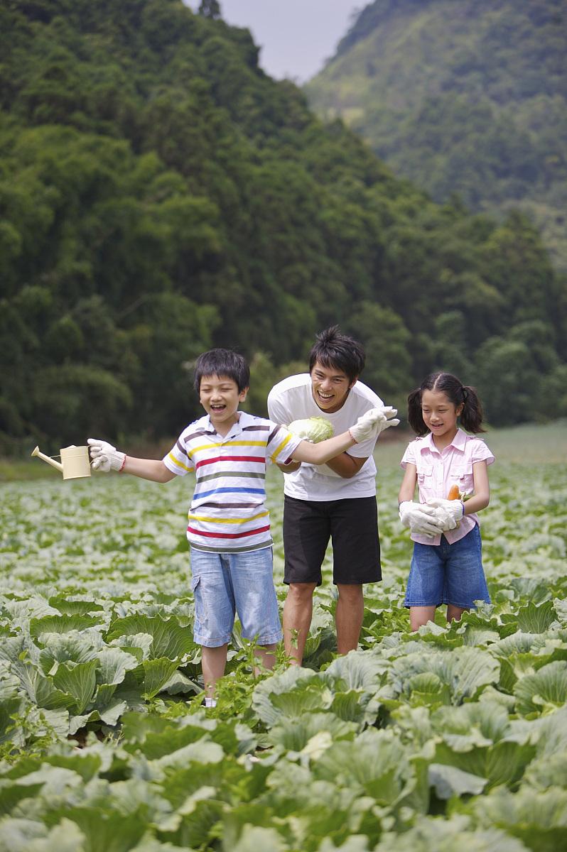 家庭,农场图片