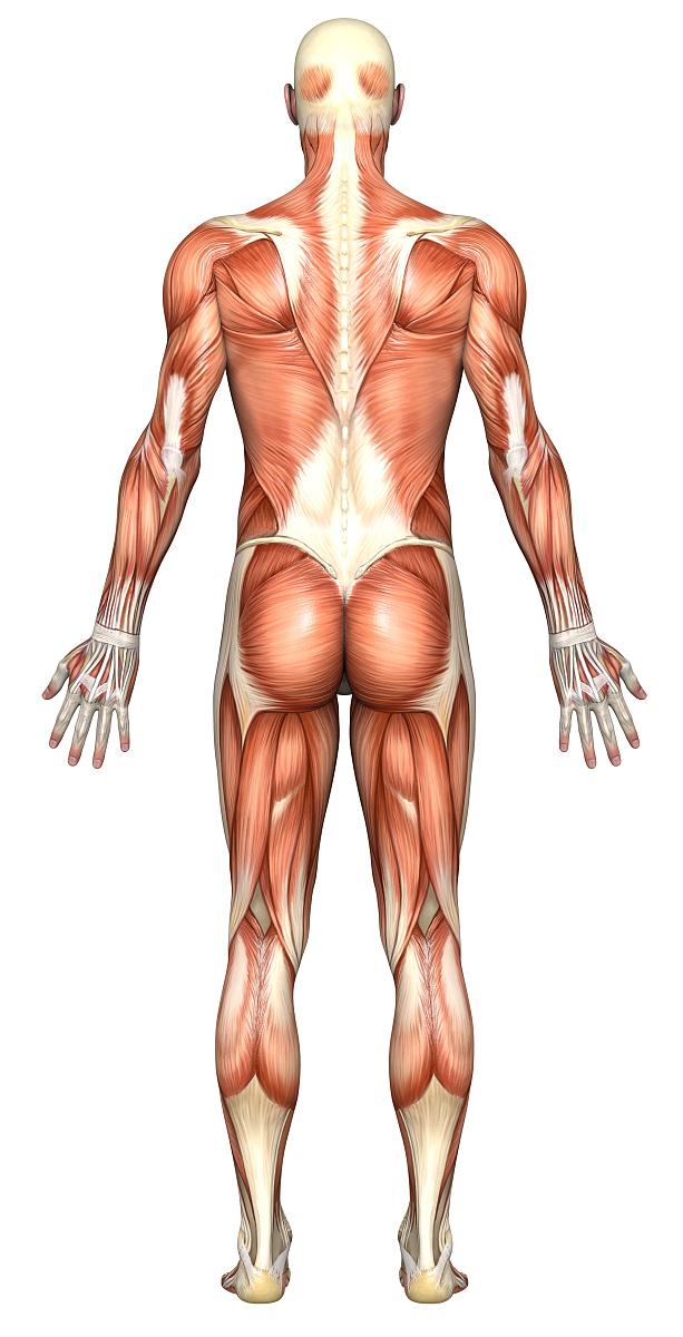 肌肉_站在工业背景面前的肌肉发达男子