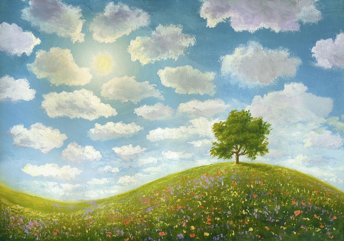 创造力,自然,水平画幅,户外,蓝色,花,树,未经垦殖的土地,天空,太阳图片