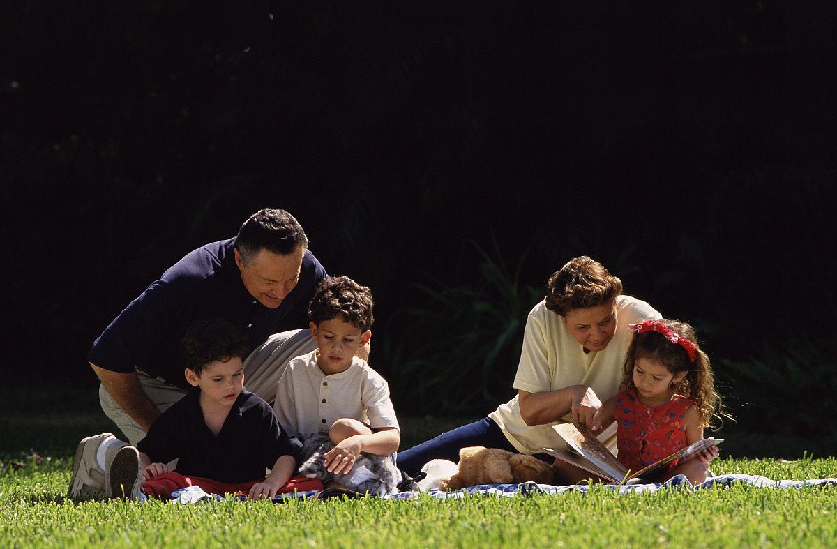 奶奶和孙子xinjiao_爷爷奶奶和孙子(4-7)阅读在草坪上