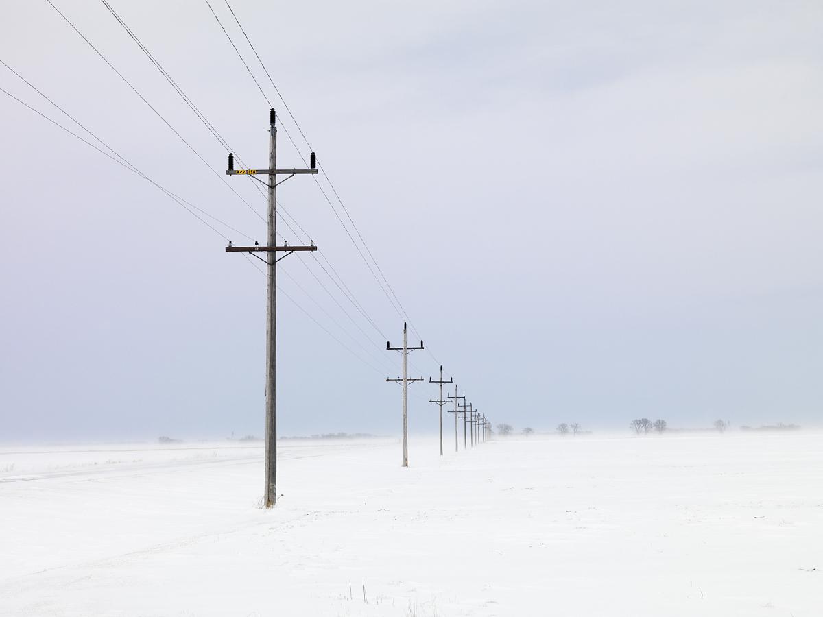 snow的电线杆图片