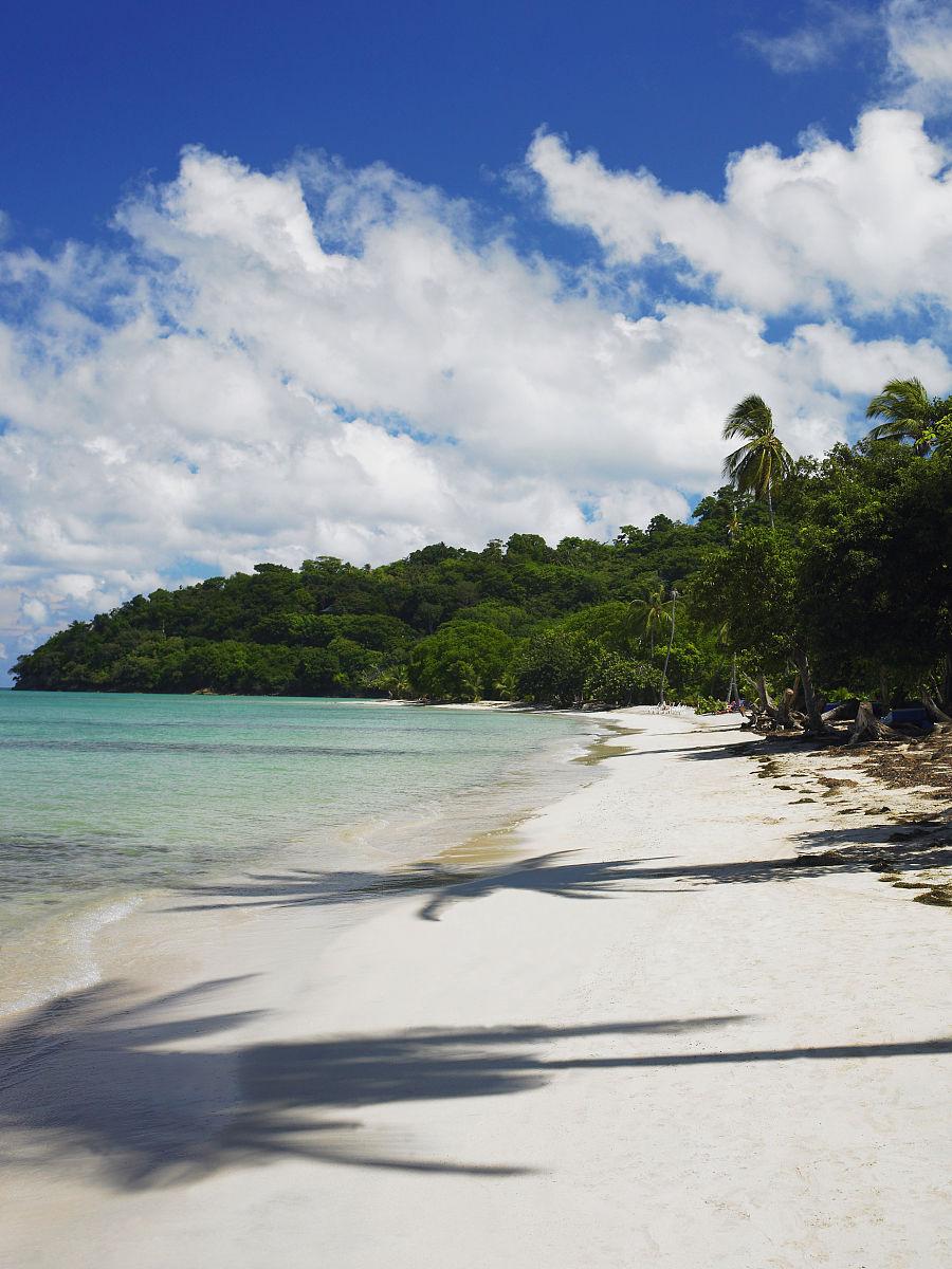 �m��y�n����_树在沙滩上,普罗维登西亚的影子,普罗圣卡塔利娜,圣安德烈斯y普罗威登