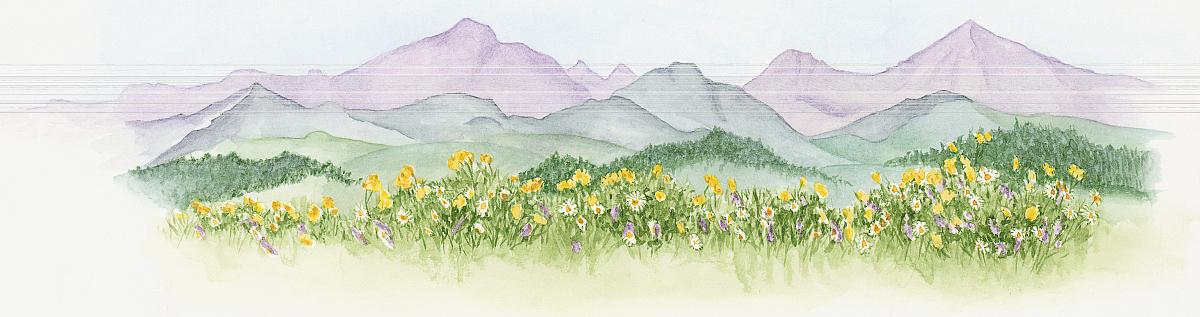 宁静,多样,清新,生长,丰富,环境,自然,水平画幅,全景,户外,田园风光图片