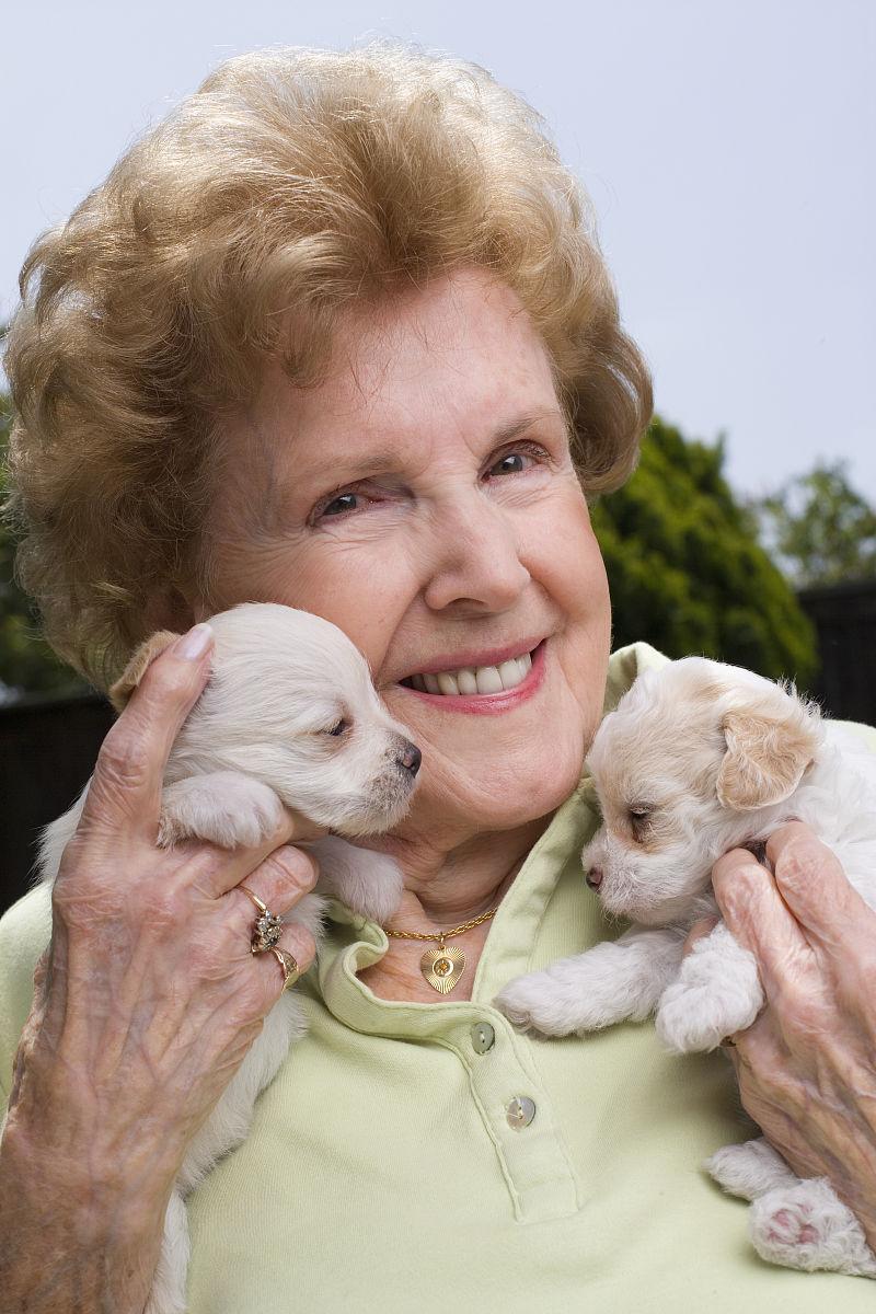 高级女子抱两只小狗,面带微笑,户外,肖像图片