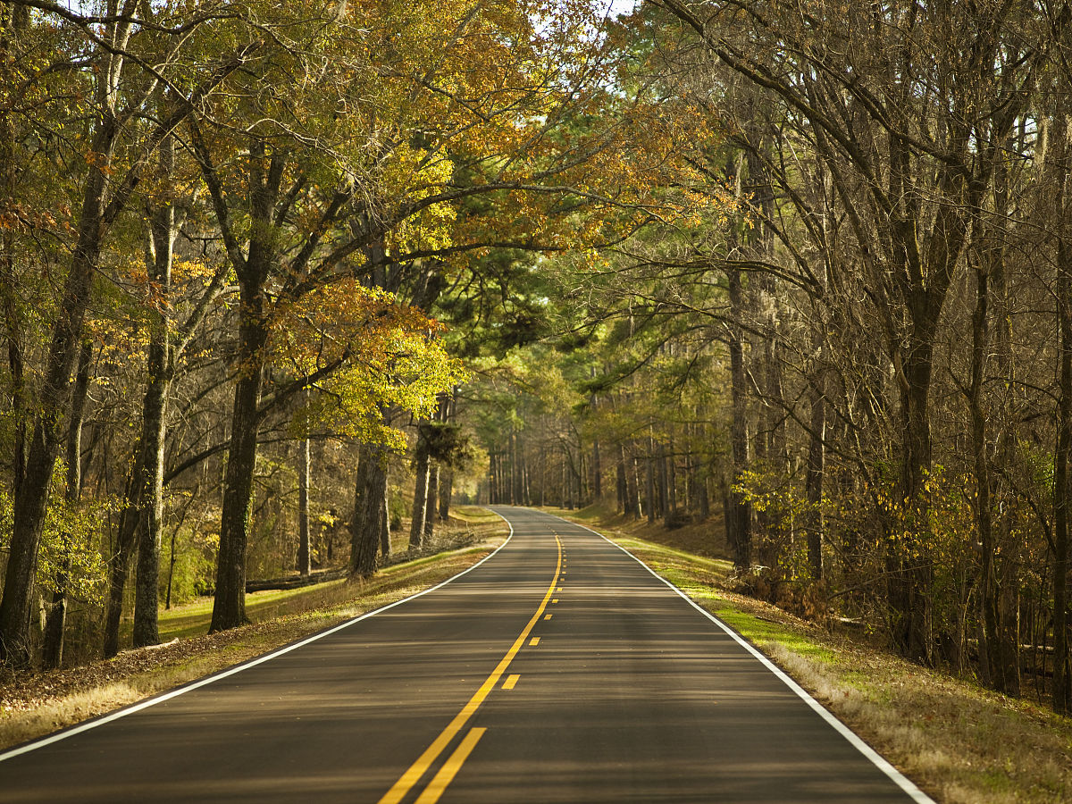路�_公路在秋天
