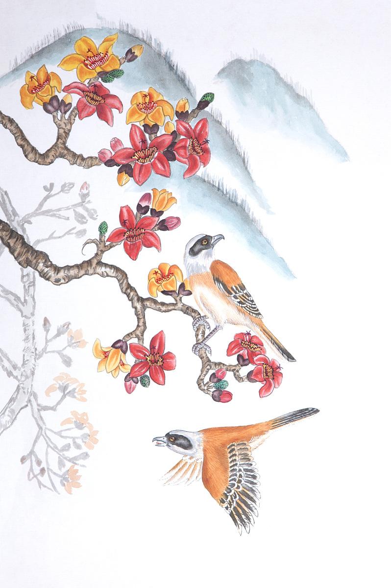 国画,花鸟画,木棉花,伯劳图片