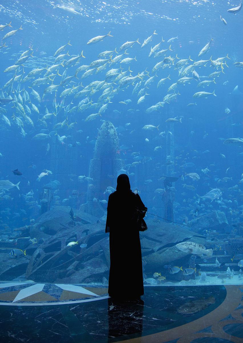 亚特兰蒂斯的水族馆在朱美拉棕榈岛亚特兰蒂斯酒店图片