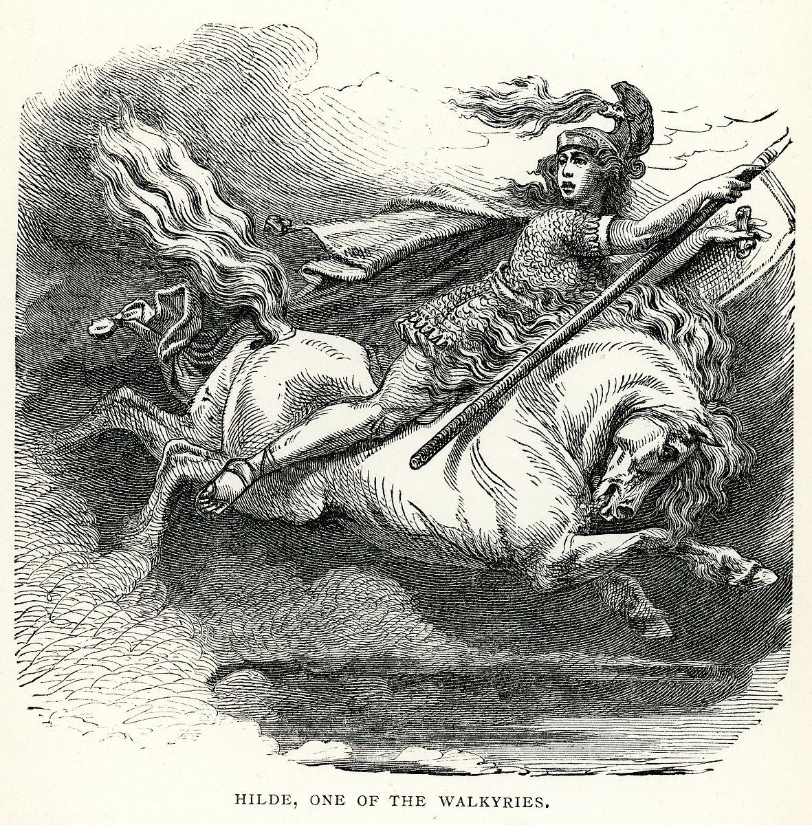 北欧神话-瓦尔基里图片