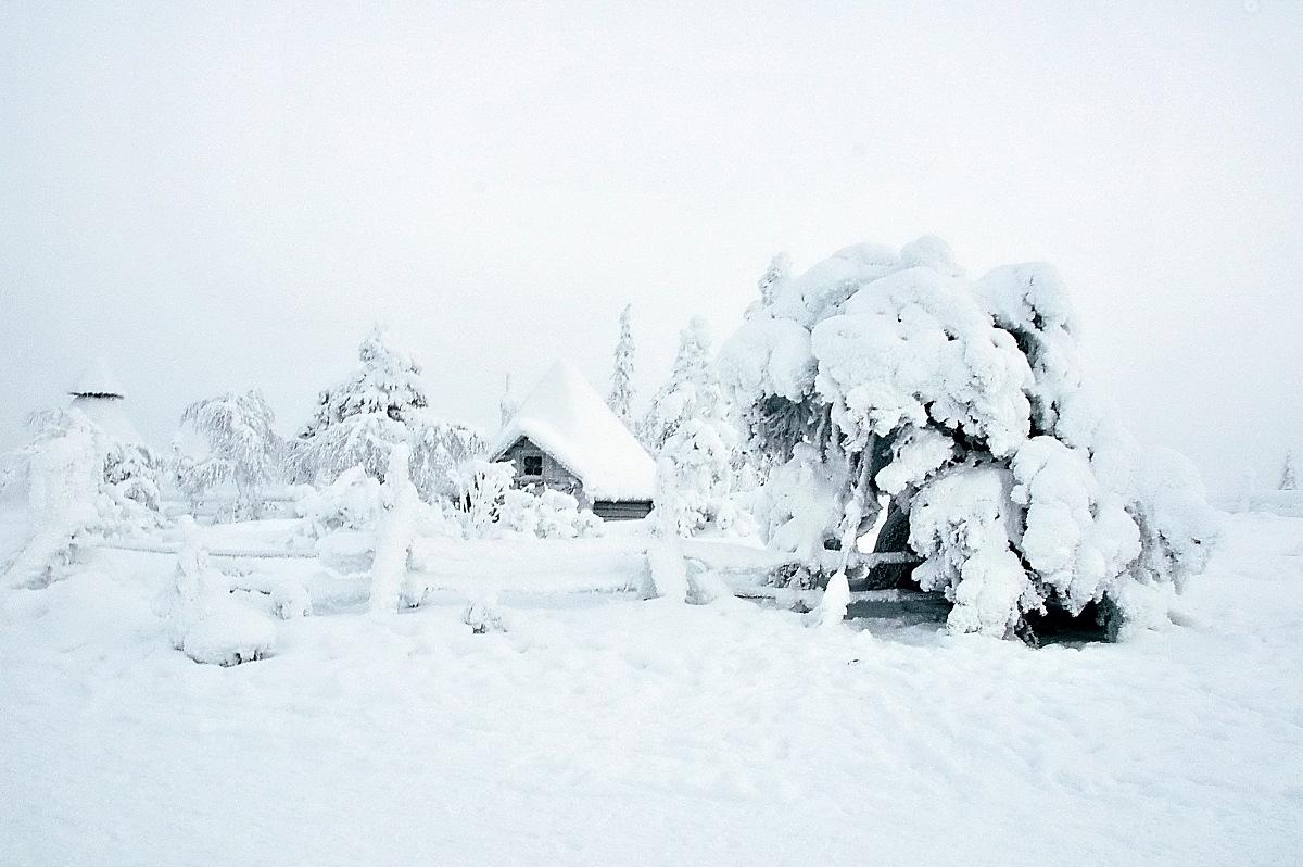 雪��/~���x+�x�&�7:d��_下的雪