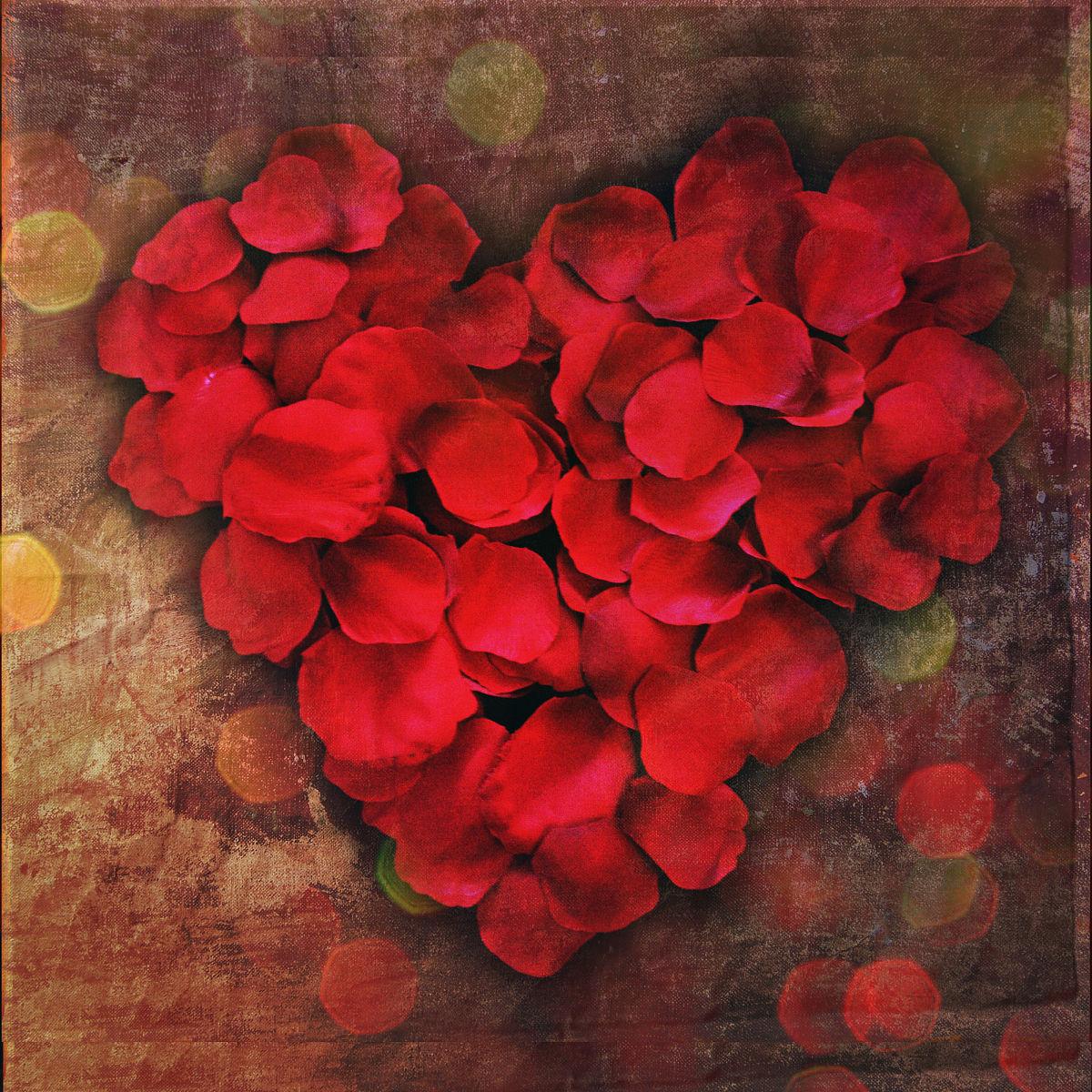 玫瑰花瓣形成心形符号图片