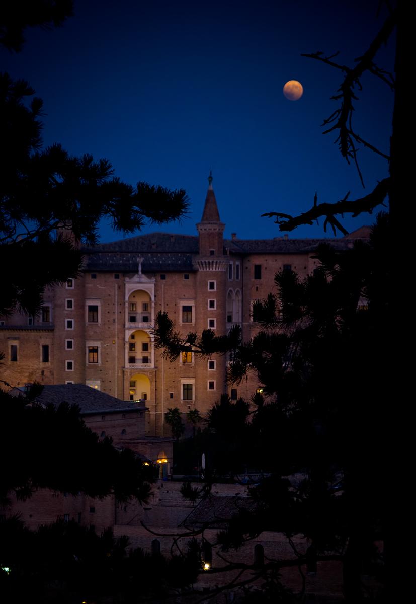 地球,建筑,透镜,城市,意大利,米兰,都市风景,乘客,世界地图,宫殿,夜晚图片