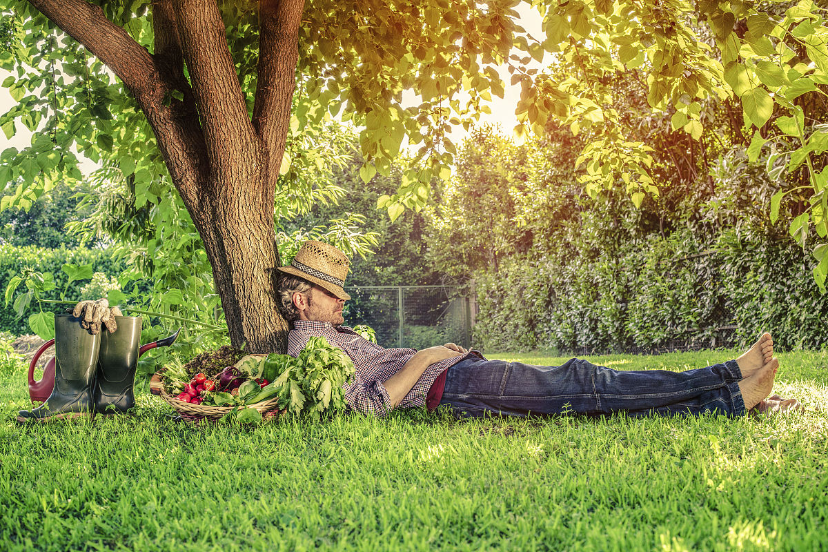 农业,生活方式,自然,水平画幅,全身像,户外,田园风光,欧洲,白人,农民图片