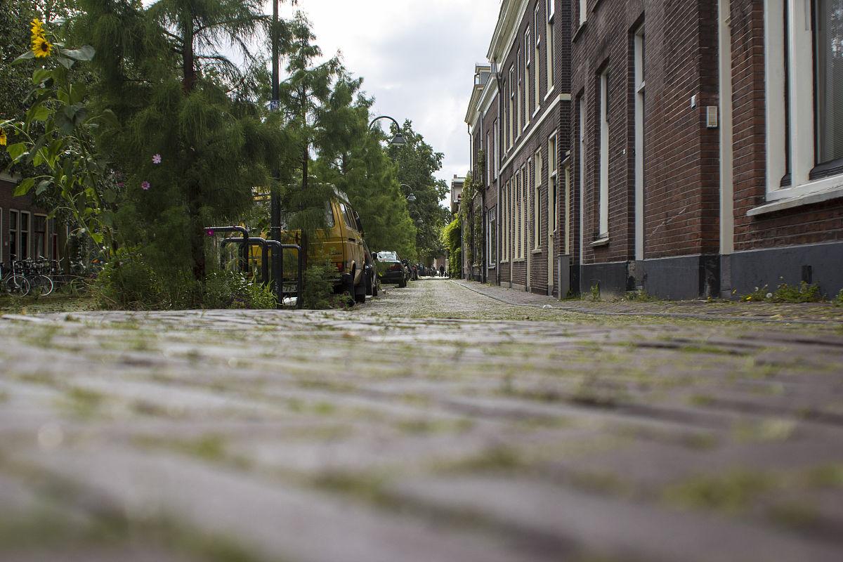 荷兰代尔夫特的城市设计图片