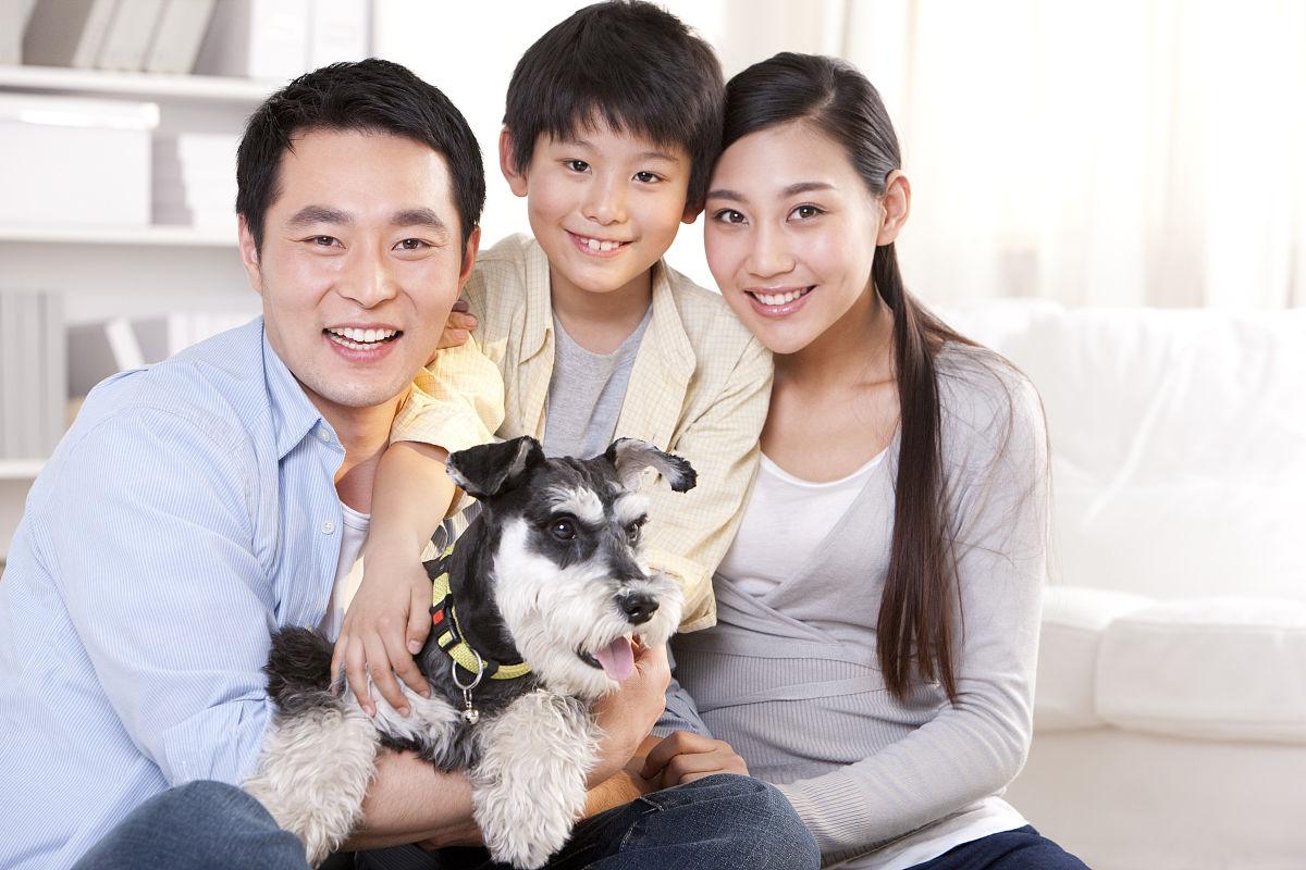 苏格兰粗毛猎狐犬,全家福,家庭,狗,宠物,一只动物,可爱的,搂着肩膀图片