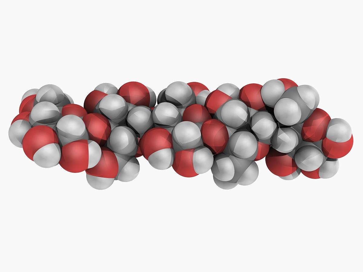纤维素分子图片