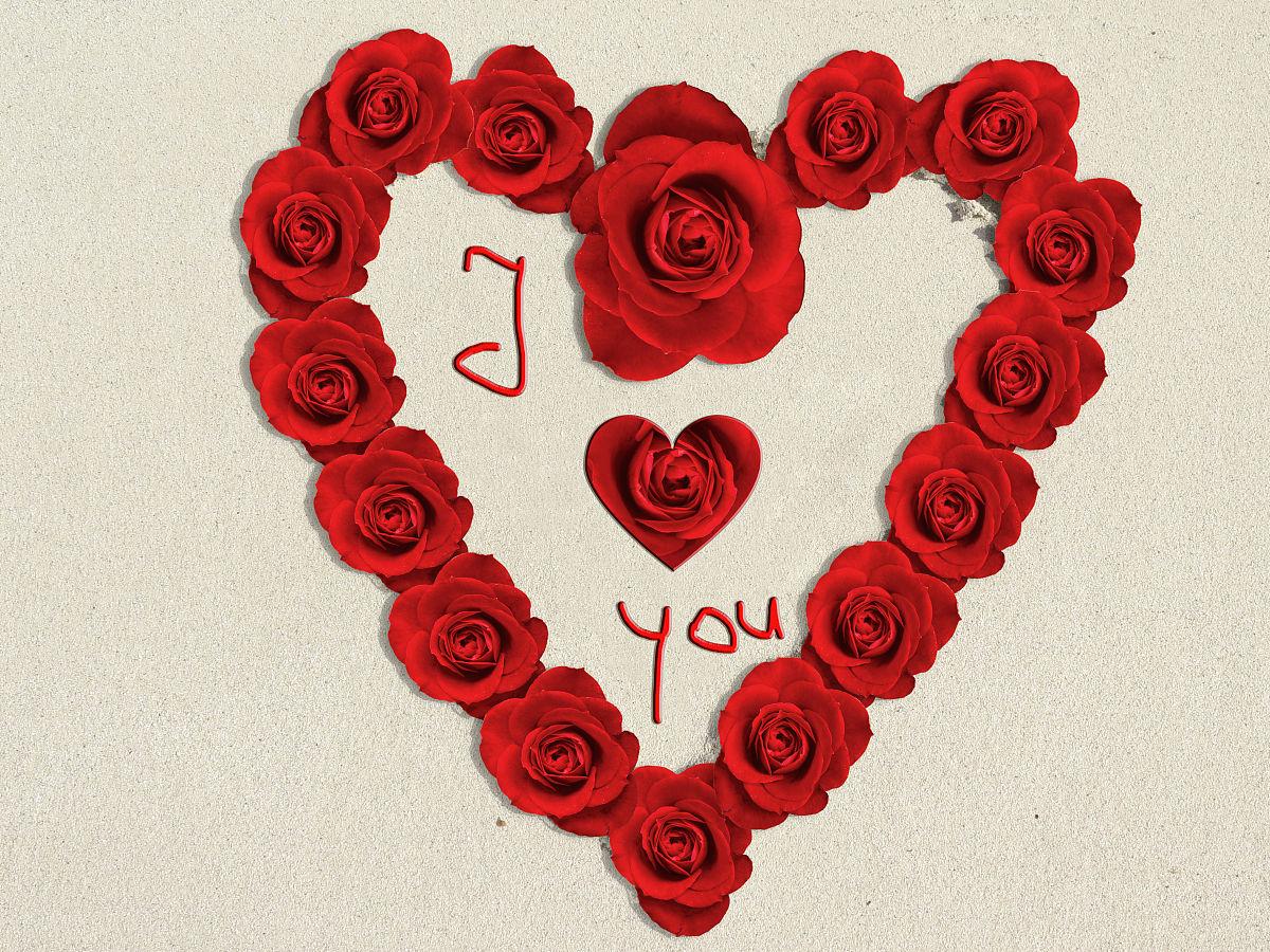 兽人老公我爱你_我爱你的心在沙与玫瑰