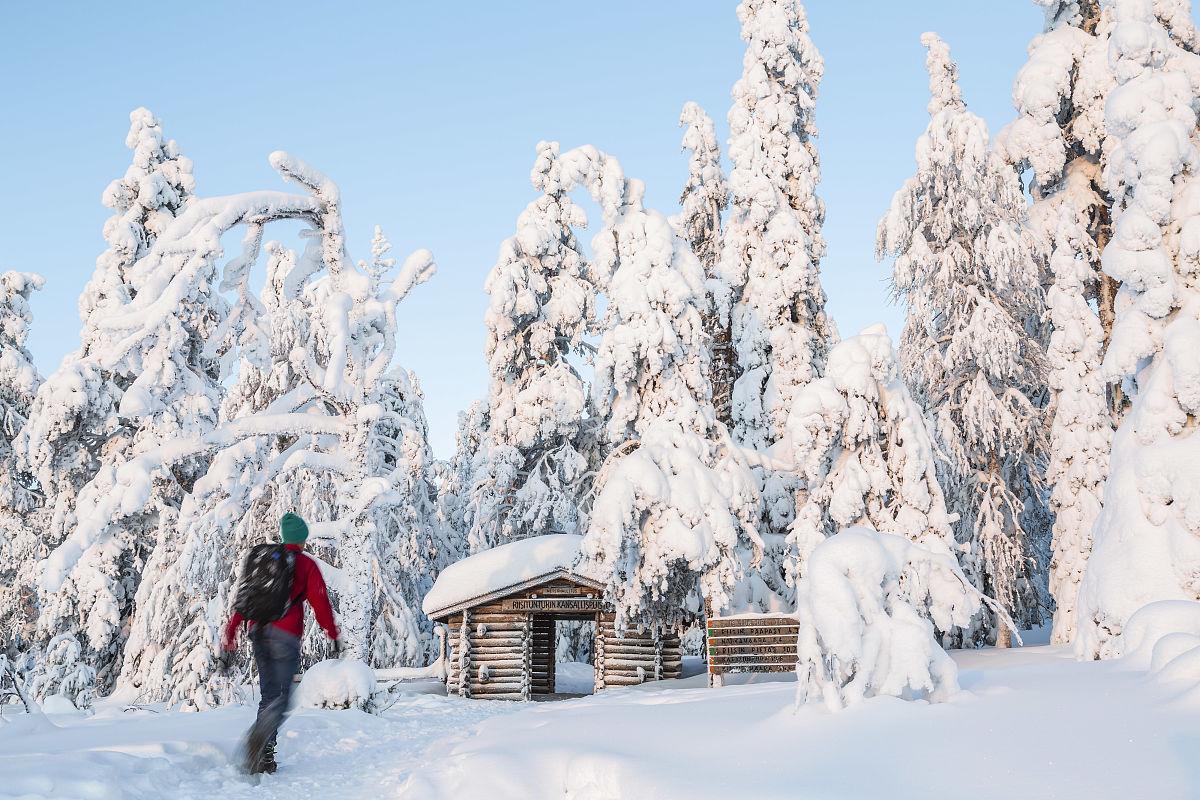 芬兰,人,男人,斯堪的纳维亚文化,芬兰国,欧洲北部,冬天,传统文化,成年图片