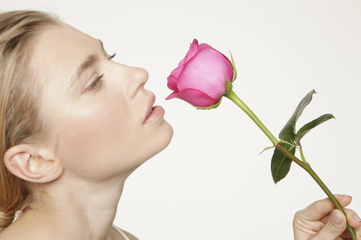 年轻女人闻粉红色玫瑰在工作室图片