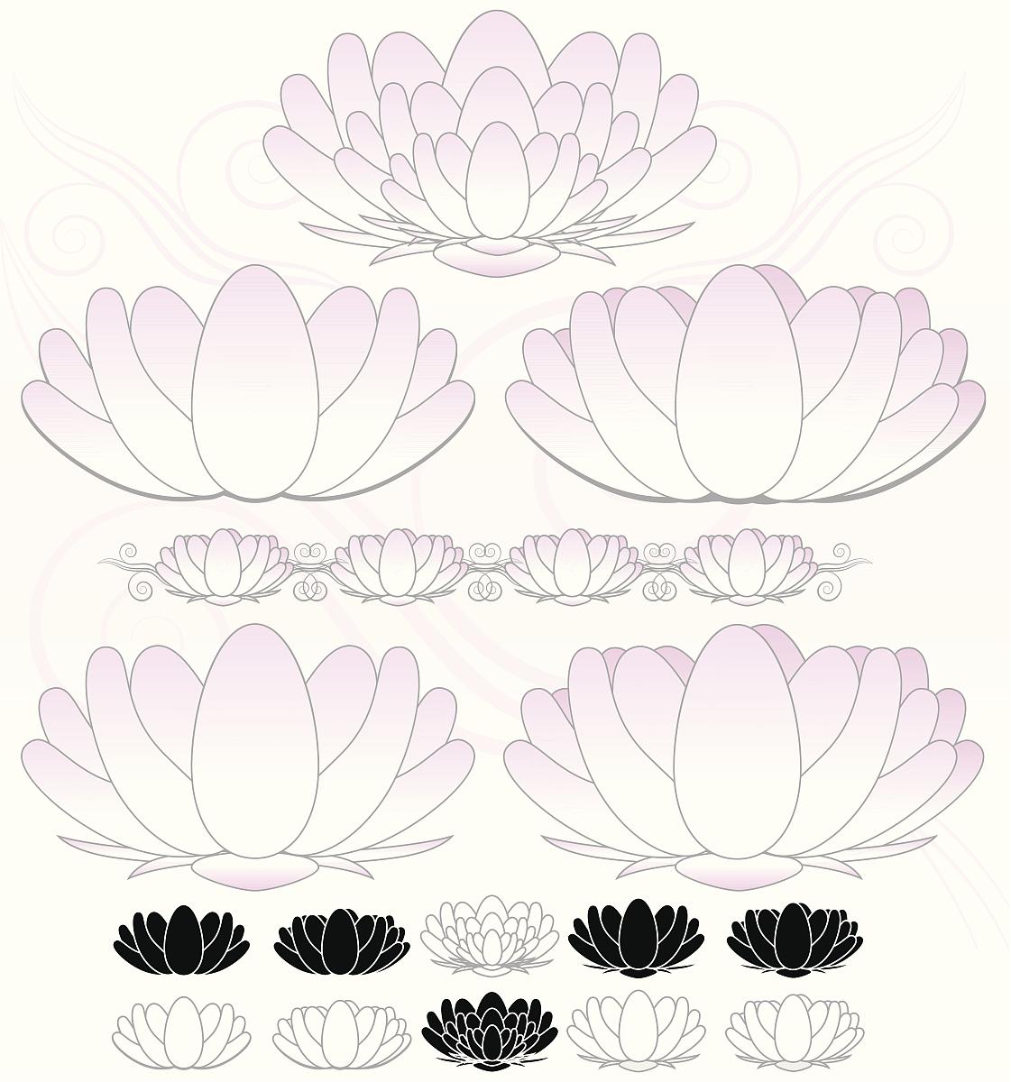 宁静,黑色,白色,式样,花,睡莲,背景,计算机图标,莲花,花纹,无人,矢量图片
