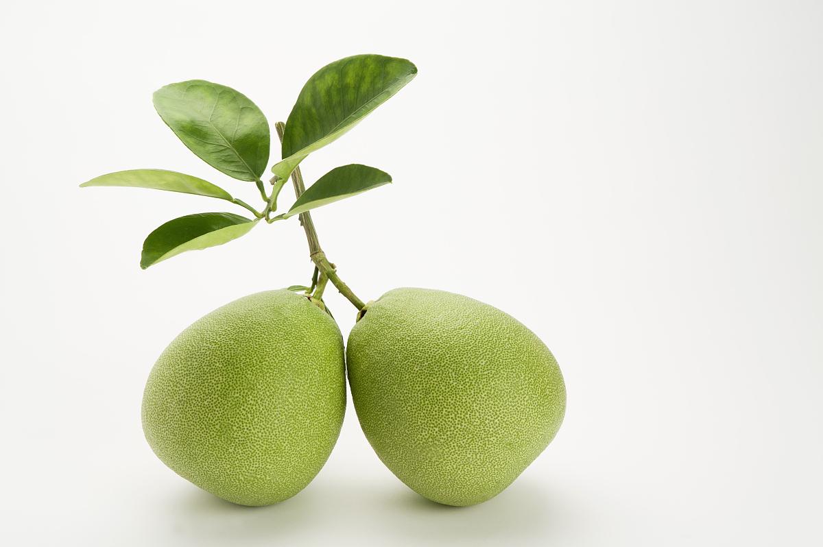 柚子,图片