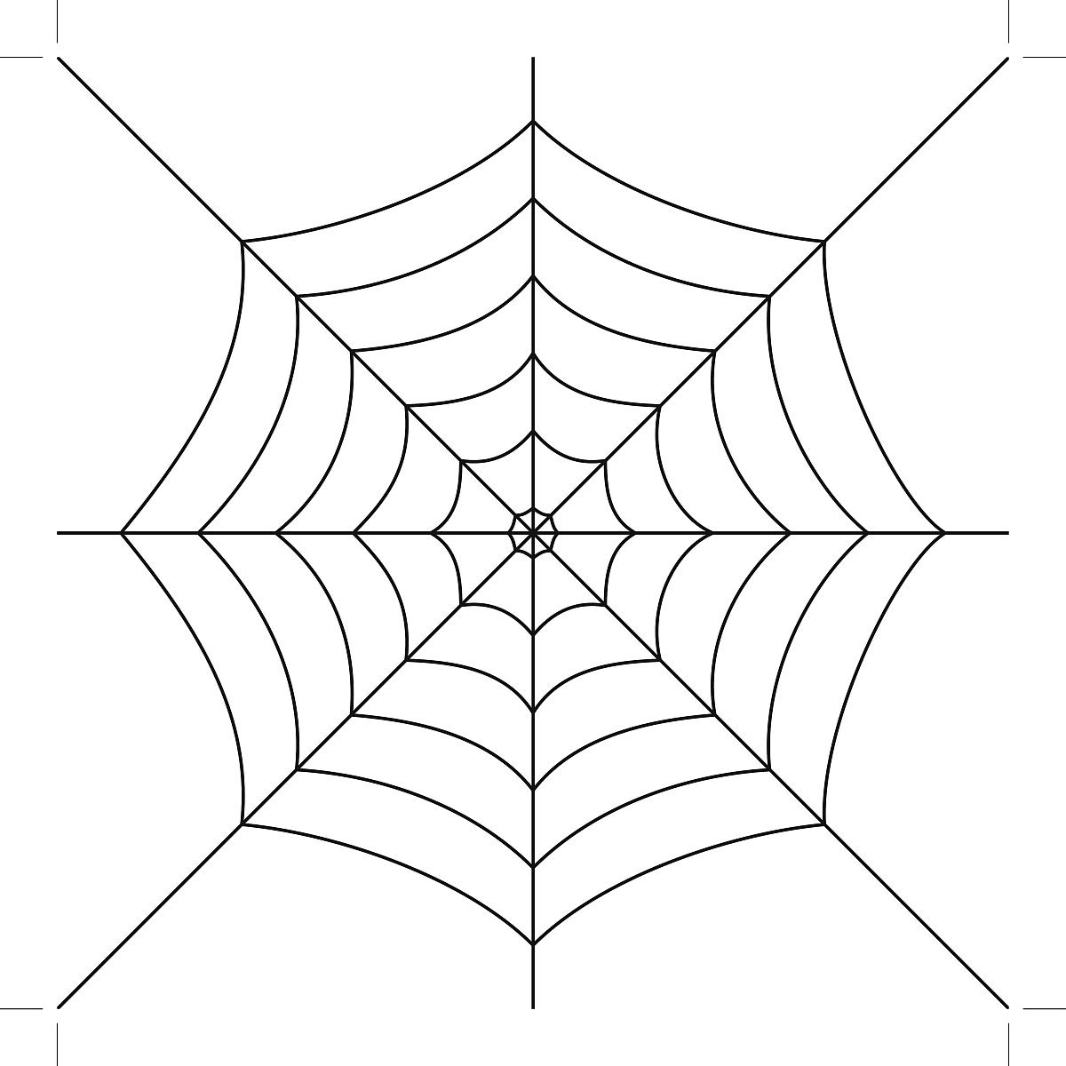 蜘蛛网膝盖纹身手稿分享展示图片