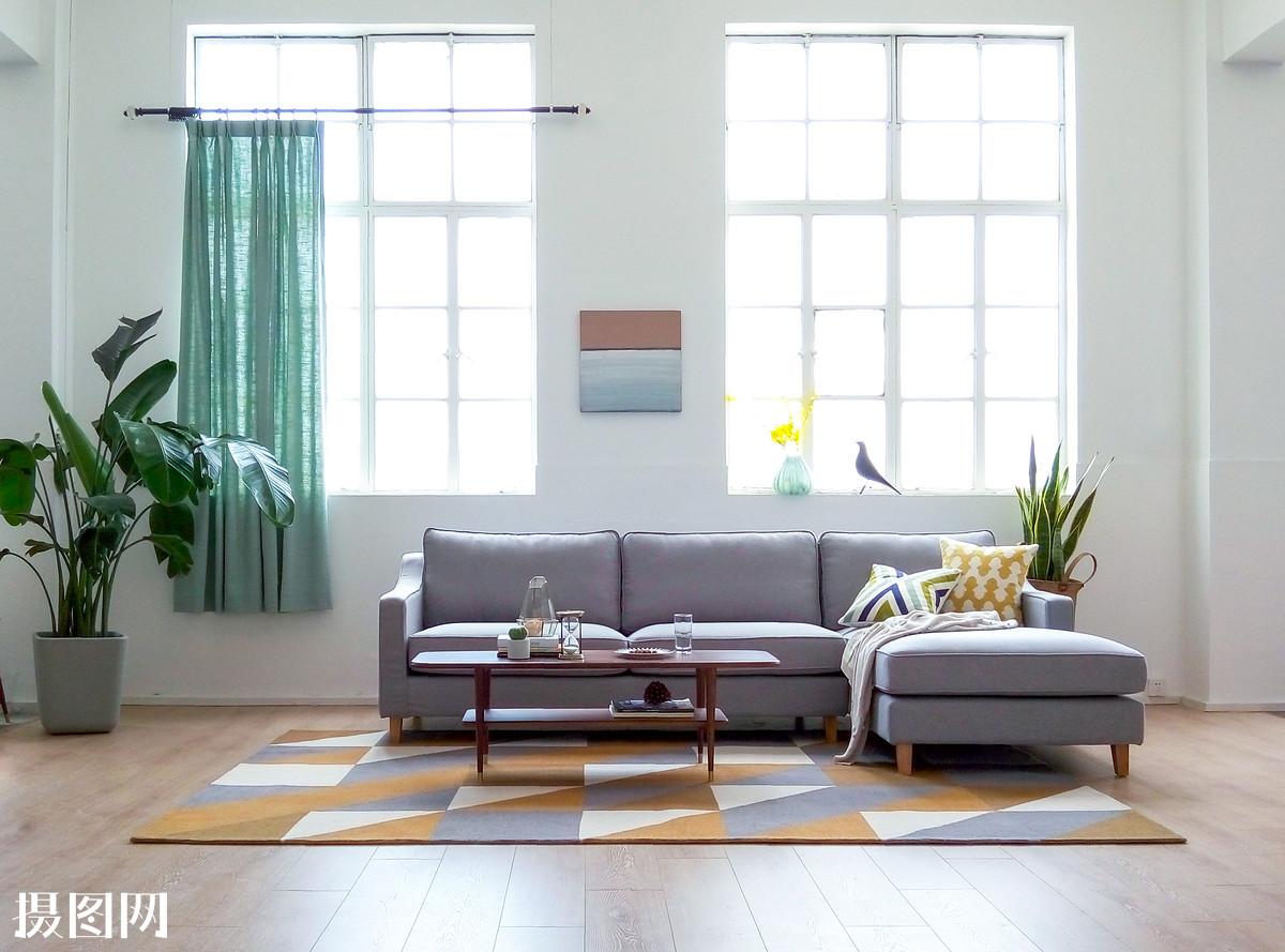 饰品,装饰,盆景,室内设计,木地板,北欧,风格,清新,田园,几何,绿植图片