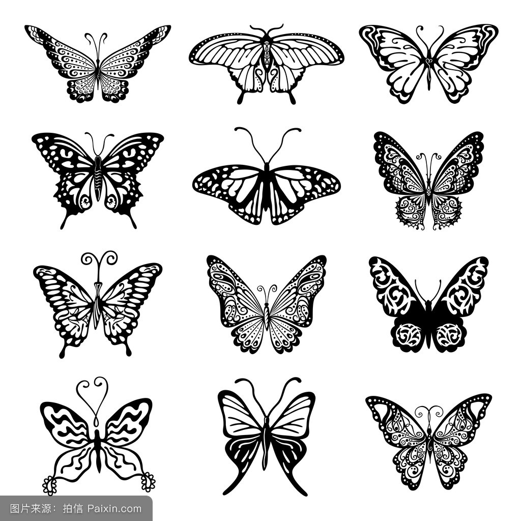蝴蝶标志设置图片