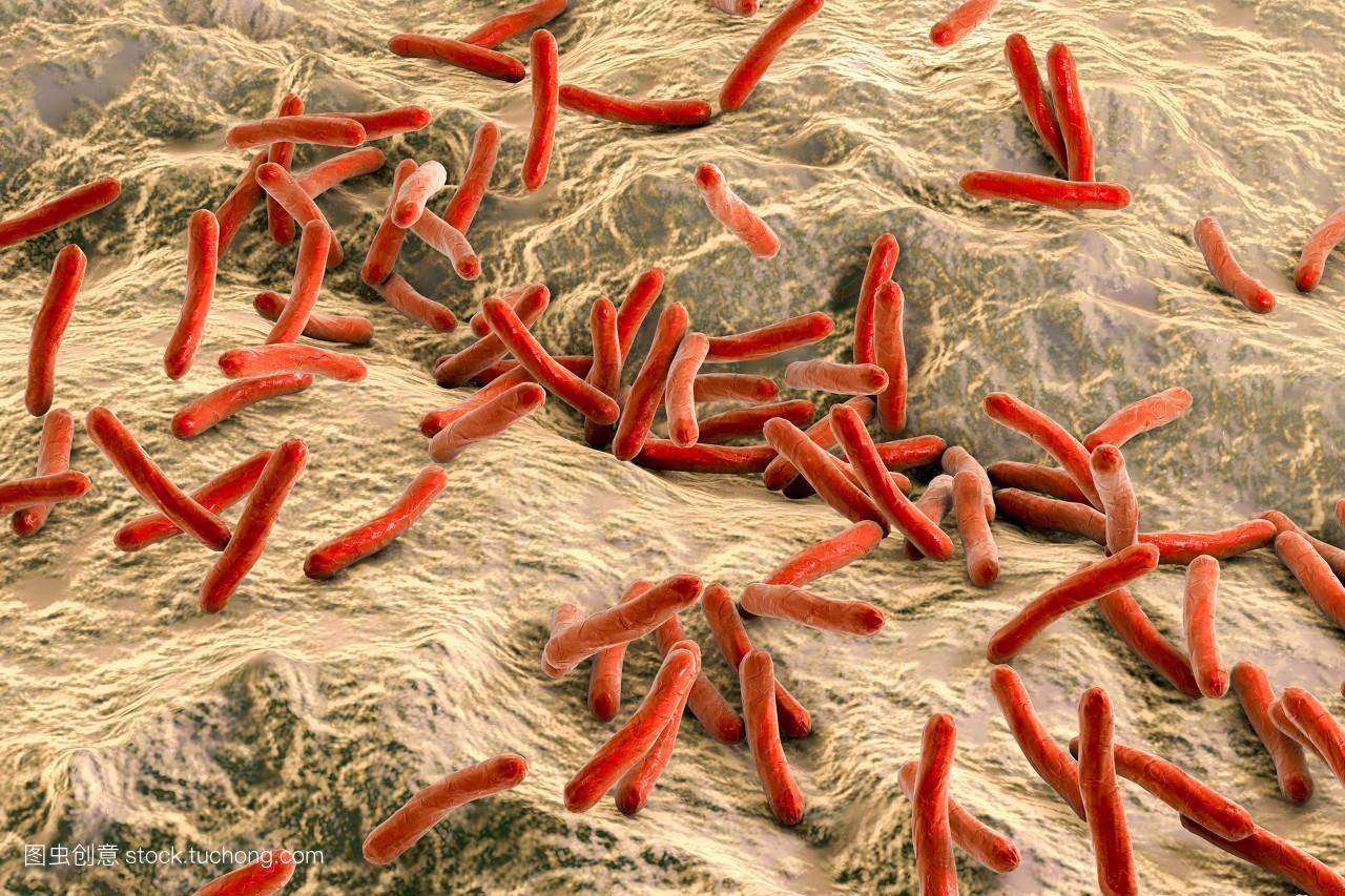三维,艺术品,麻风病,微生物,细菌,植物学,微生物学,病原体,细菌学图片