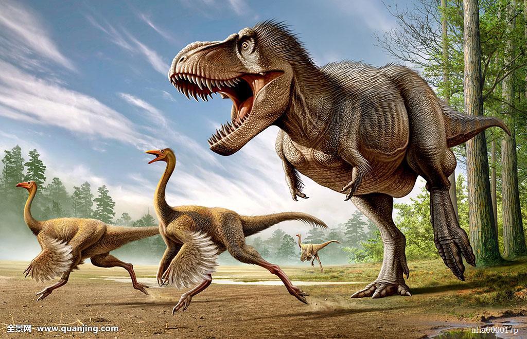 什么恐龙最厉害囹�a_霸王龙,攻击,两个,恐龙