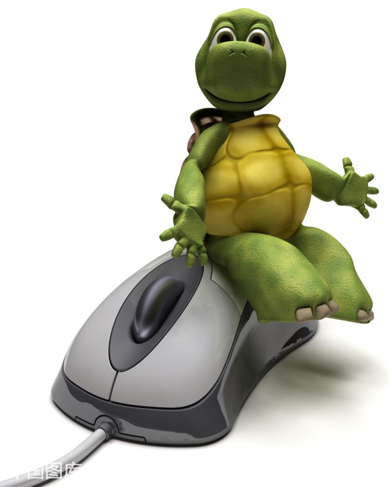 我的乌龟鼠标大小,怎样给我乌龟冬眠舒服的 房间