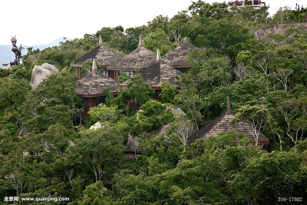 三亚,亚龙湾热带天堂森林旅游区,亚龙湾热带天堂森林公园,鸟巢别墅图片