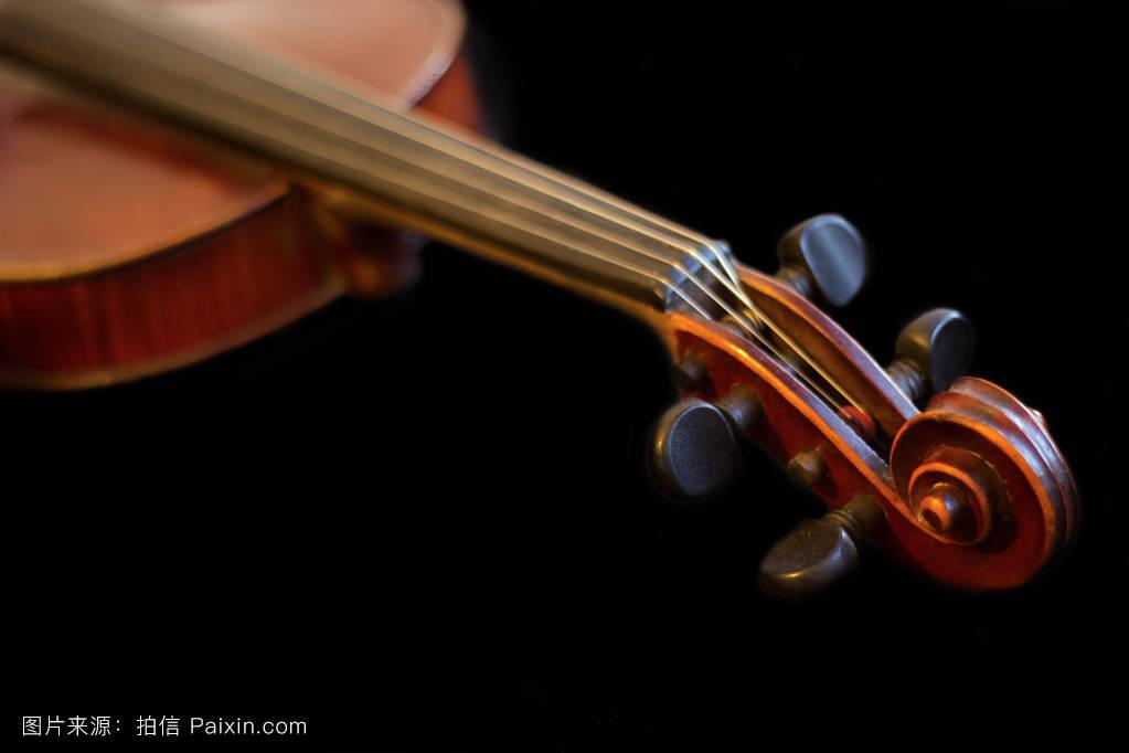 木褐色小提琴图片