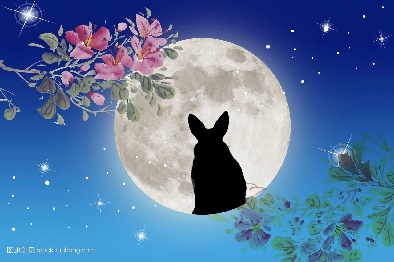 彩图,影像,数码,中国风,横图,有色背景,蓝色背景,月亮,天空,一只动物图片