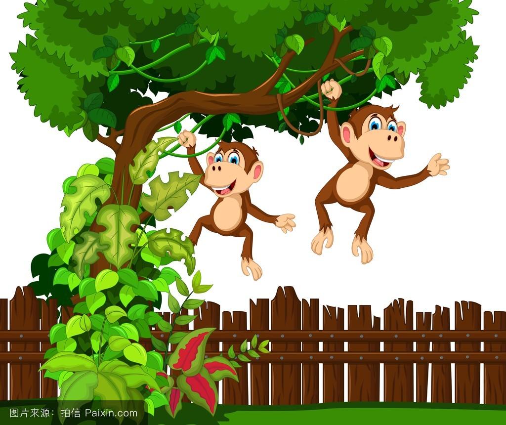 猴子,玩,积极的,快乐,挥手,幸福的,分离,可爱的,站立,令人愉快的,森林图片