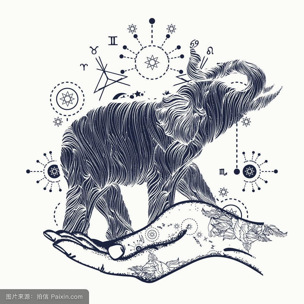 嬉皮士,打印,赶时髦的人,炼金术,户外的,印度,黑色和白色,大象纹身