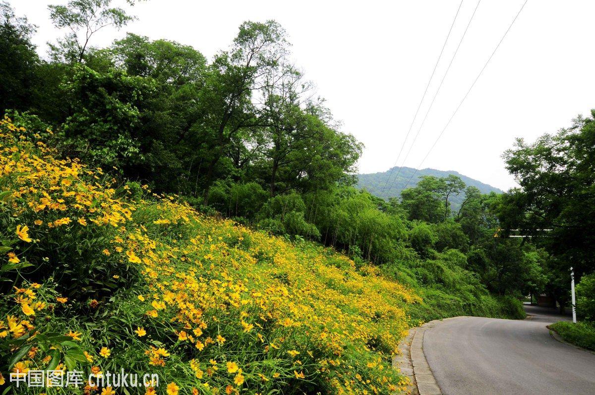 南京老山森林公园图片