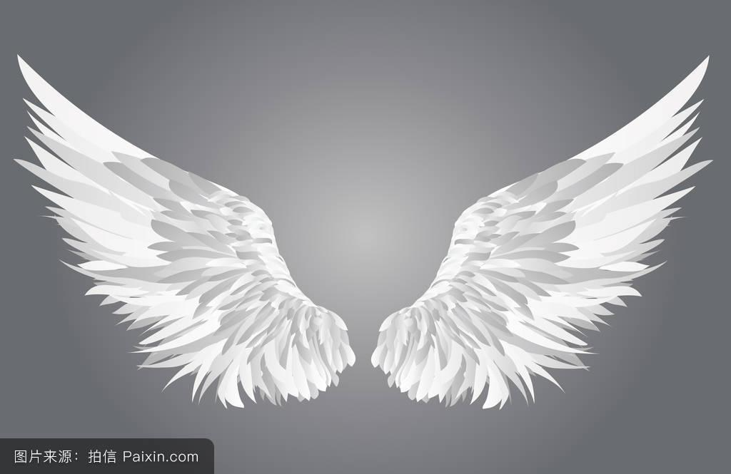 象征,自由,要素,一对,哥特式,素描,动物,鹰,羽毛,插图,装饰,和平,纹图片