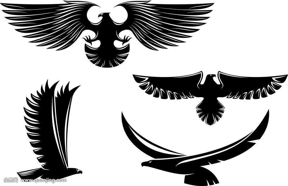鸟:自由_纹身图案图片