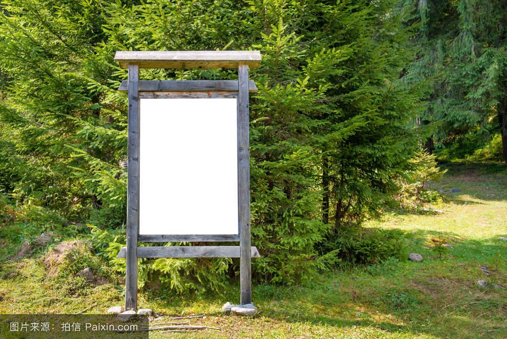 白色,森林,广告,路标,户外的,公众的,空间,设计,城市,公园,招牌,绿色图片