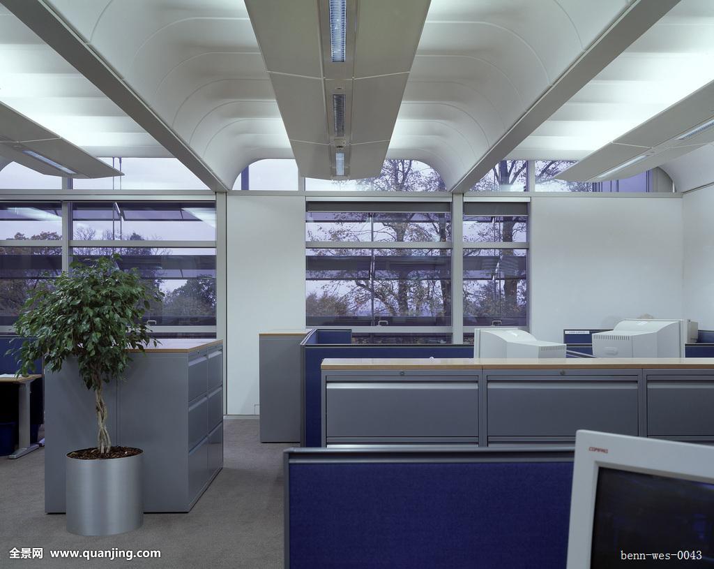 水,开放式格局,办公室,植物图片