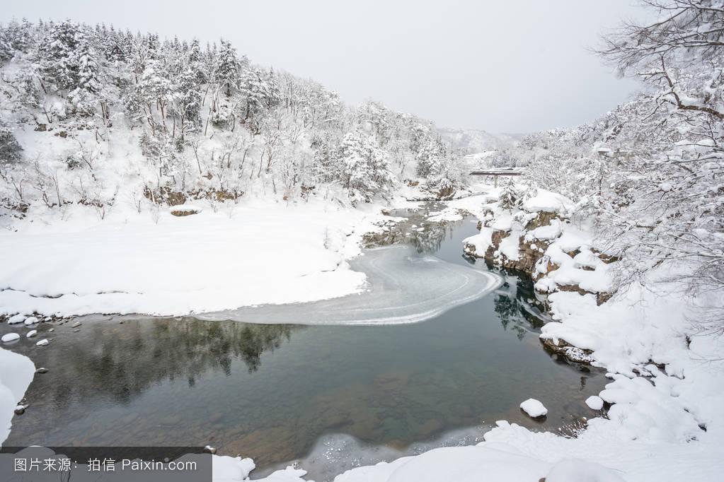 雪��/~���x+�x�&�7:d��_古老的,日本人,观光,雪,传统的,美丽的,自然,季节,建筑学,房子,遗产