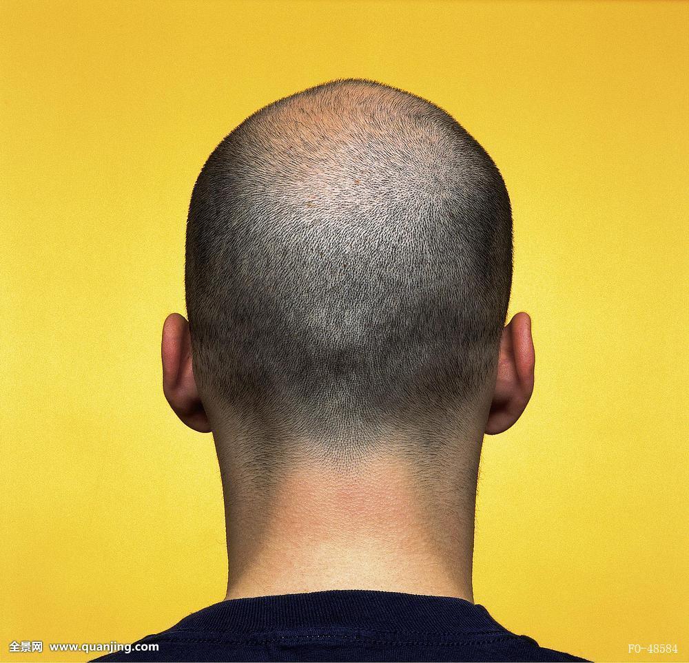 光头发型背影图片展示图片