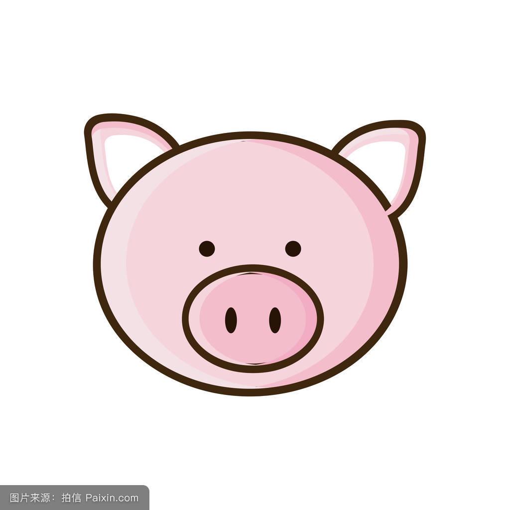 彩色图片可爱猪动物图片图片