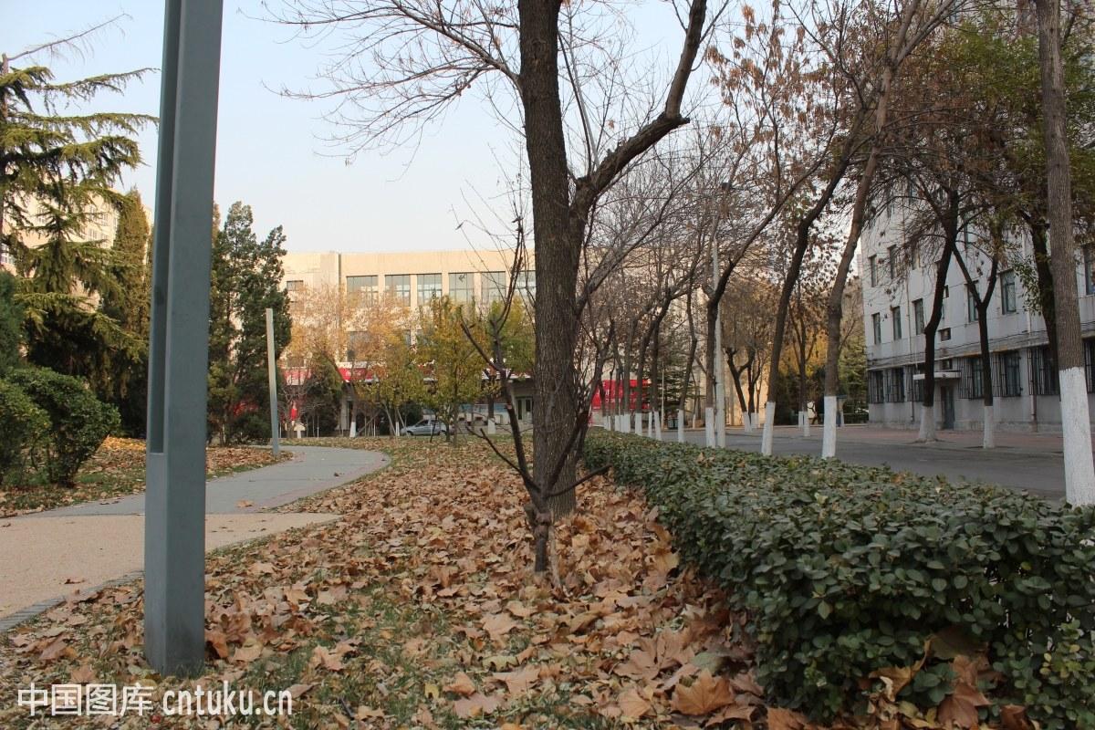 2019年天津商业大学会计学硕士和会计硕士专业学位(MPAcc)项目招生简章